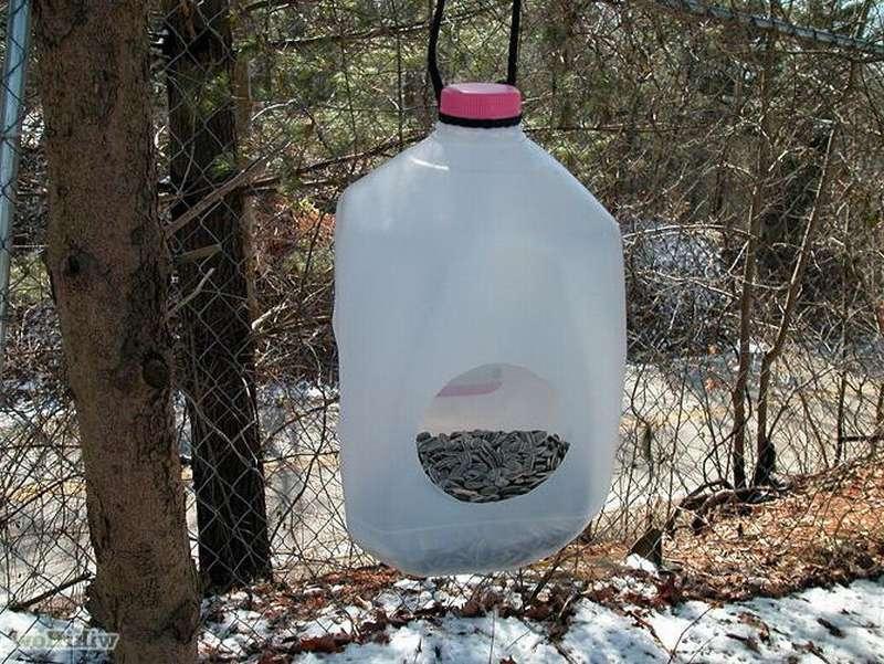 кормушка для птиц из пластиковой канистры